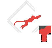 danimoves Logo